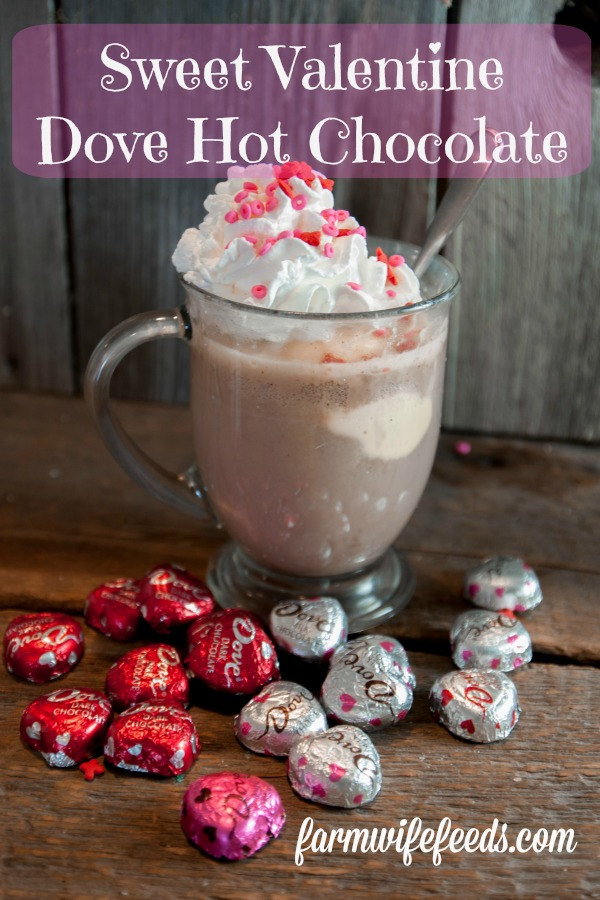 Sweet Valentine Dove Hot Chocolate from Farmwife Feeds is an easy wat to make your sweetheart feel special. #valentine #dove #chocolate