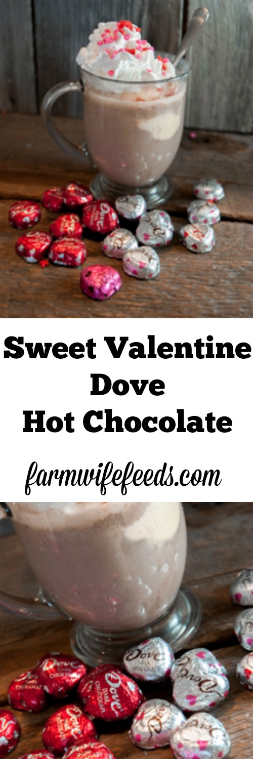Sweet Valentine Dove Hot Chocolate will win over your love!