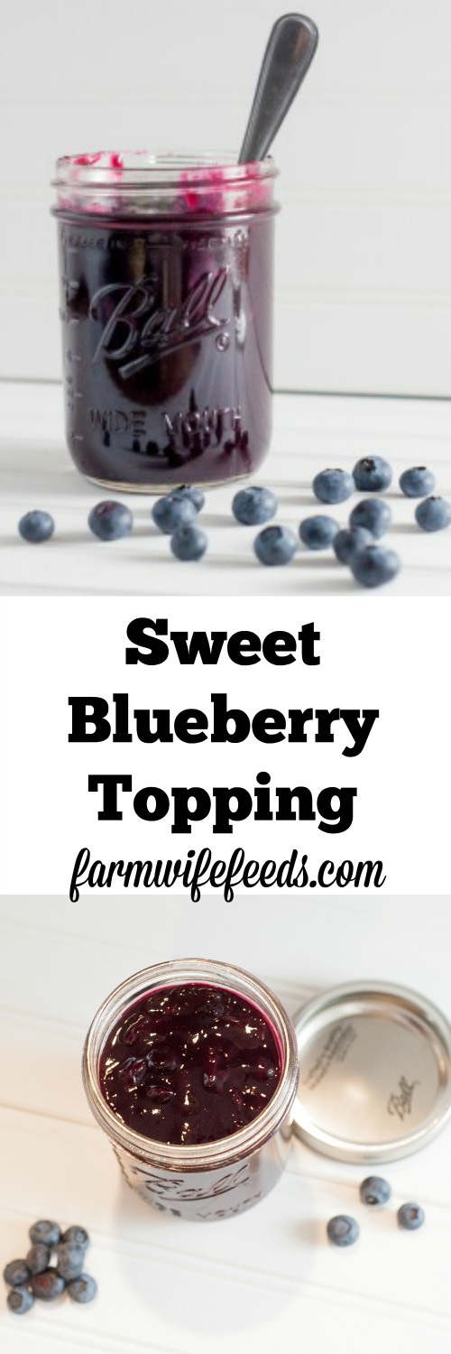 This Sweet Blueberry Topping recipe is so delicious, the perfect cross between a syrup and sauce-I love blueberries!