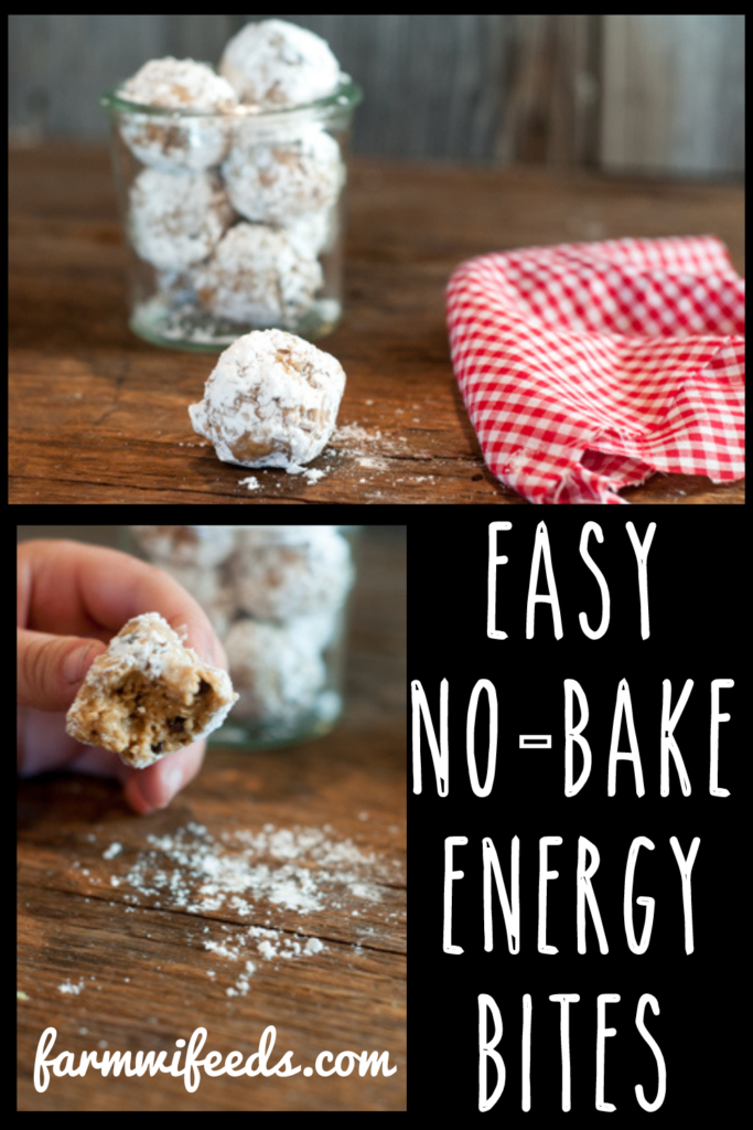 Easy No-Bake Energy Bites from Farmwife Feeds are a protein packed snack with just enough sweet to please everyone. #energy #protein #snack