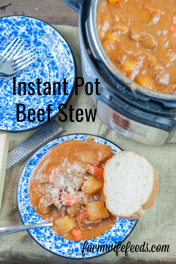 Instant Pot Beef Stew from Farmwife Feeds is an easy full hearty meal full of beef and vegetables for a one bowl meal. #beef #instantpot #vegetables #recipe