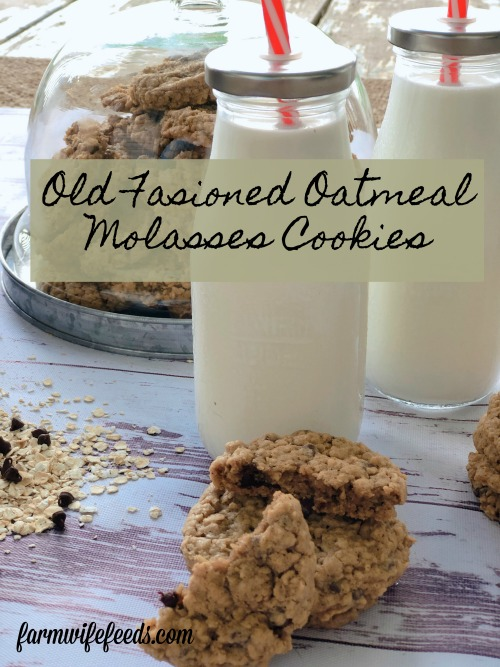 Old Fashioned Oatmeal Molasses Cookies from Farmwife Feeds is a simple oatmeal cookie with just a hint of molasses to make it perfectly sweet. #oatmeal #cookie #molasses