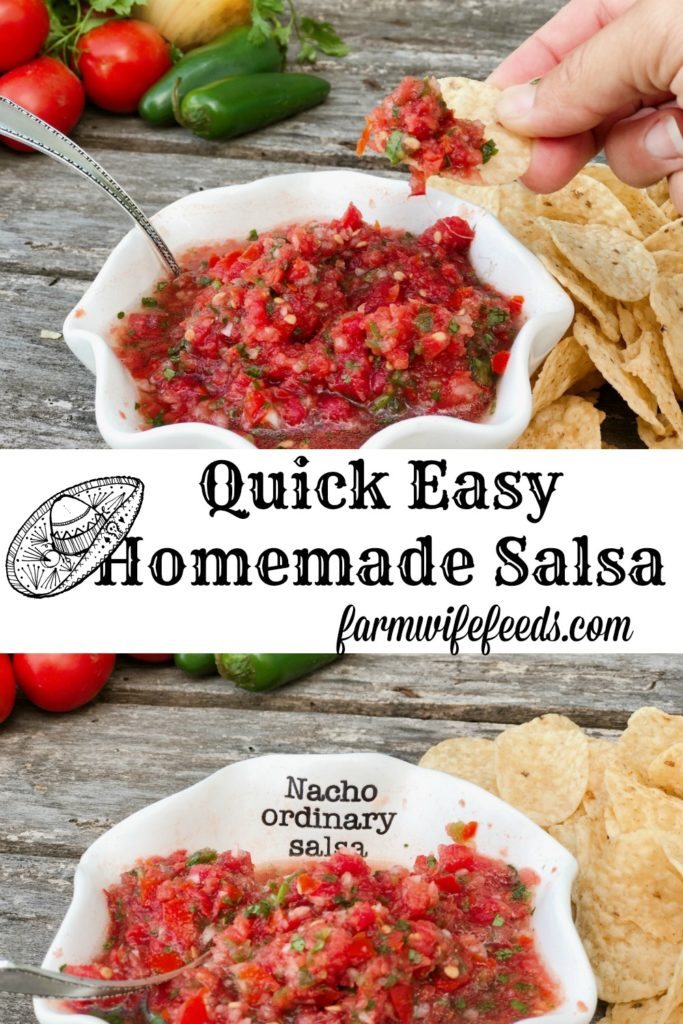 Quick Easy Homemade Salsa from Farmwife Feeds uses fresh produce for a great snack any time. #salsa #mexican #dip
