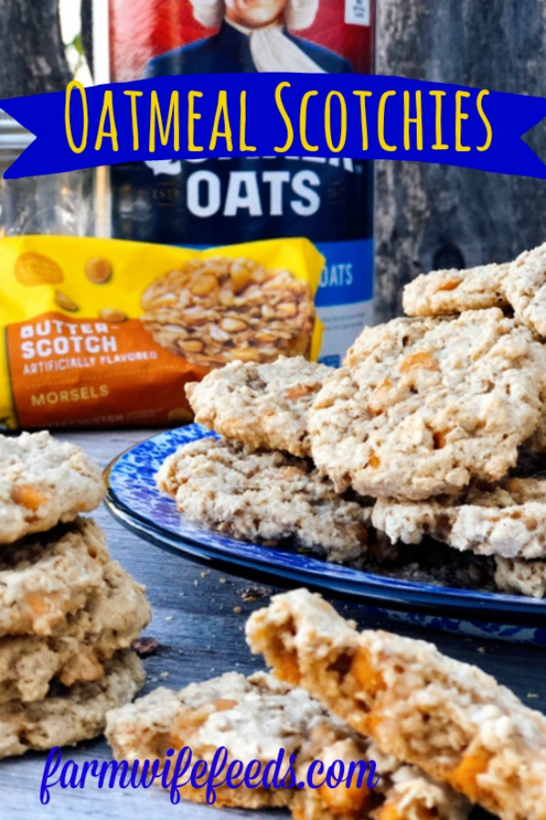 Oatmeal Scotchies from Farmwife Feeds, a soft chewy classic oatmeal cookie with butterscotch chips for that distinct taste. #oatmeal #cookie #butterscotch #oatmealscotchies