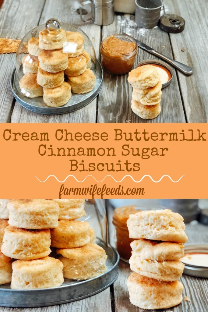Cream Cheese Buttermilk Cinnamon Sugar Biscuits from Farmwife Feeds are a flakey biscuit with just a touch of sweetness. #creamcheese #biscuit #homemade #recipe