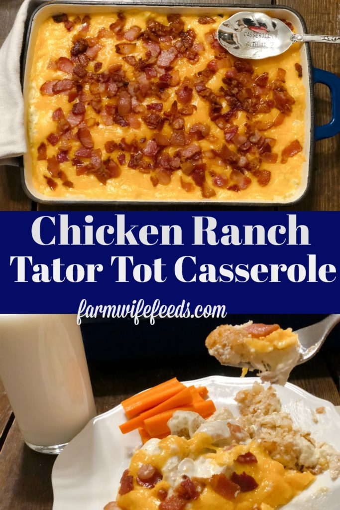 Chicken Ranch Tator Tot Casserole from Farmwife Feeds. A cheese easy hot dish with meat and potatoes for a delicious filling family dinner.