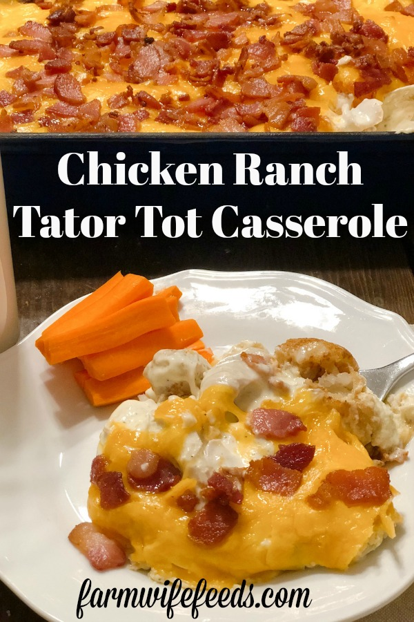 Ranch Chicken Tater Tot Casserole from Farmwife Feeds is a classic hotdish made with chicken and tater tots for an easy supper for the family. #casserole #hotdish #chicken #tatertot