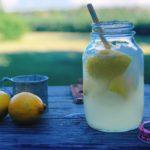 County Fair Lemon Shake-Up