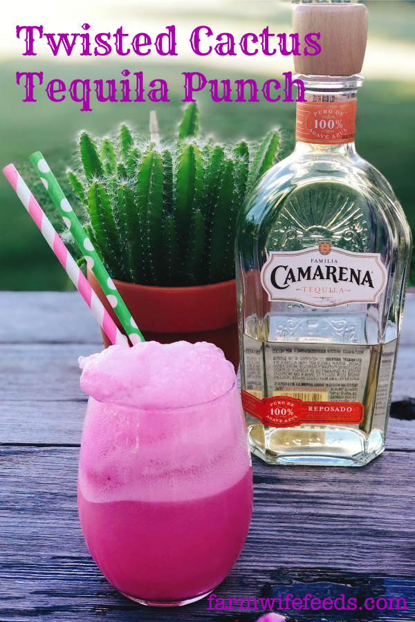 Twisted Cactus Tequila Punch from Farmwife Feeds, 3 ingredients for a fun drink by the glass or in a punchbowl for a crowd! #tequila #punch #sherbet #cocktail #pinkcocktail