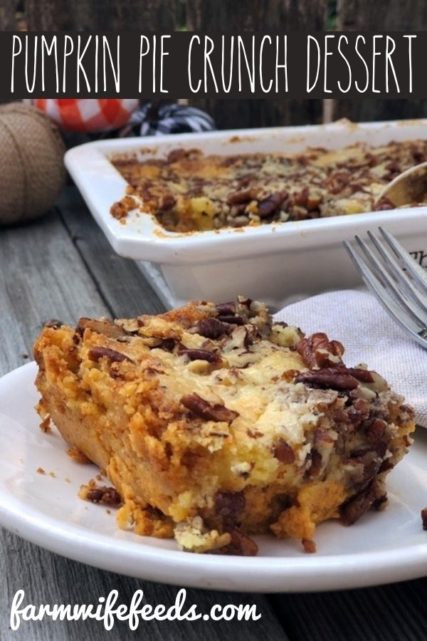 Pumpkin Pie Crunch Dessert from Farmwife Feeds is the perfect easy instead of pie dessert, pumpkin pie flavor with a cake and toasted pecan layer. #pumpkin #pumpkinpie #fall #dessert