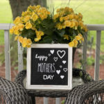 A Mother's Day Picture