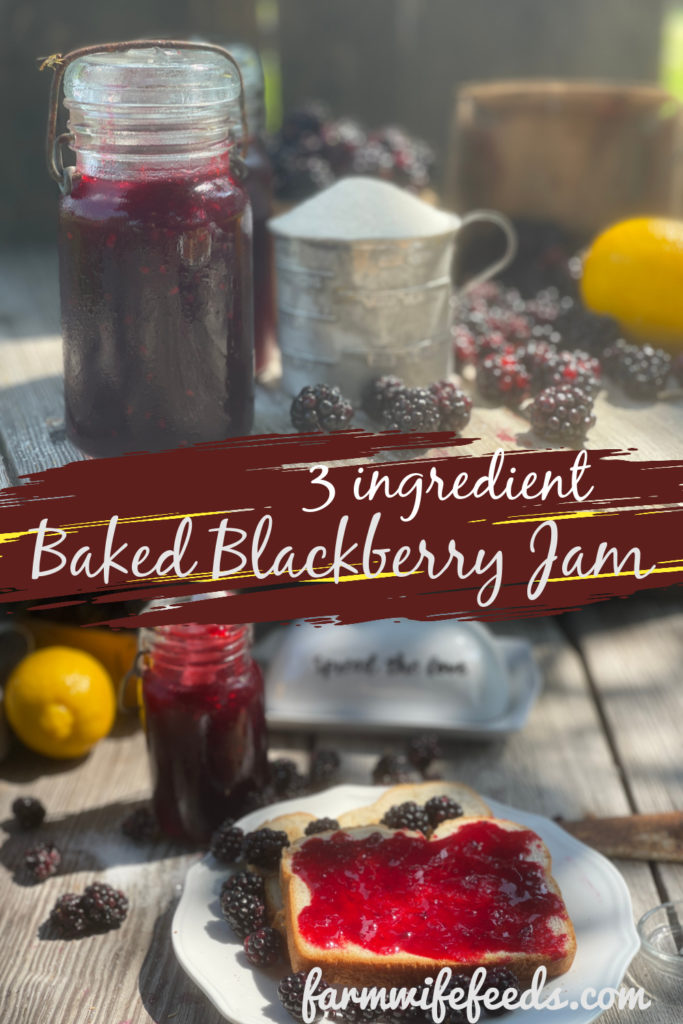 3 Ingredient Seedless Blackberry Jam from Farmwife Feeds. A simple jam using no pectin and the fruit is baked in the oven. #blackberries #jam #recipe